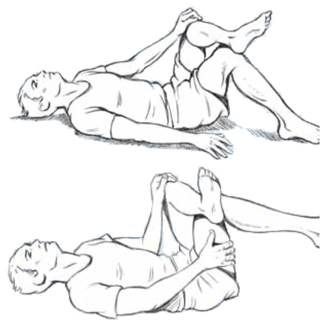 pin sciatic nerve diagram images on pinterest